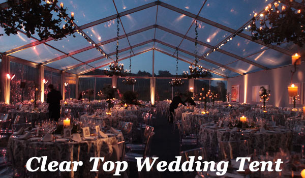 SHELTER Wedding Marquee - Clear Top Party Tent for Sale